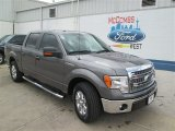 2014 Sterling Grey Ford F150 XLT SuperCrew #94218913