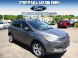 2014 Sterling Gray Ford Escape SE 2.0L EcoBoost #94219125
