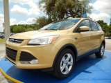 2014 Karat Gold Ford Escape SE 1.6L EcoBoost #94219071