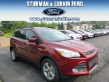 2014 Sunset Ford Escape SE 2.0L EcoBoost #94320421