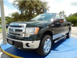 2014 Green Gem Ford F150 XLT SuperCrew 4x4 #94360724