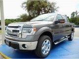 2014 Sterling Grey Ford F150 XLT SuperCrew 4x4 #94360720
