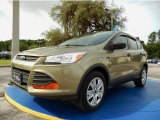 2013 Ginger Ale Metallic Ford Escape S #94394730