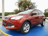 2014 Sunset Ford Escape SE 1.6L EcoBoost #94394725