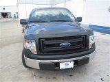 2014 Blue Jeans Ford F150 XL SuperCab #94474593