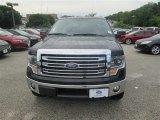 2014 Tuxedo Black Ford F150 Lariat SuperCrew 4x4 #94474592