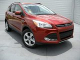 2014 Sunset Ford Escape SE 2.0L EcoBoost #94515523