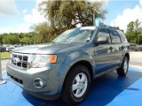 2010 Steel Blue Metallic Ford Escape XLT V6 #94553000
