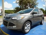 2014 Sterling Gray Ford Escape SE 1.6L EcoBoost #94552978