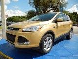 2014 Karat Gold Ford Escape SE 1.6L EcoBoost #94552977