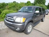 2004 Toyota Tundra SR5 Double Cab 4x4 Data, Info and Specs
