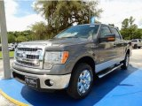 2014 Sterling Grey Ford F150 XLT SuperCrew #94639028