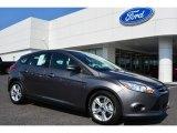 2014 Sterling Gray Ford Focus SE Hatchback #94639123