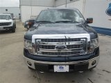 2014 Blue Jeans Ford F150 XLT SuperCrew 4x4 #94696377