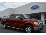 2014 Sunset Ford F150 XLT SuperCrew #94701450