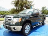 2014 Green Gem Ford F150 XLT SuperCrew 4x4 #94772848