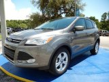 2014 Sterling Gray Ford Escape SE 1.6L EcoBoost #94772842