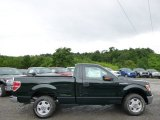 2014 Green Gem Ford F150 XL Regular Cab #94772766