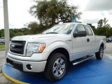 2014 Ingot Silver Ford F150 STX SuperCab #94772850