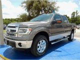 2014 Sterling Grey Ford F150 XLT SuperCrew 4x4 #94807157
