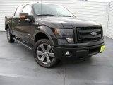 2014 Tuxedo Black Ford F150 FX4 SuperCrew 4x4 #94807327