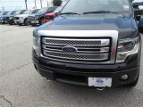 2014 Tuxedo Black Ford F150 Platinum SuperCrew 4x4 #94807090