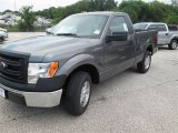 2014 Sterling Grey Ford F150 XL Regular Cab #94807085