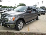 2014 Sterling Grey Ford F150 XLT SuperCrew #94807084
