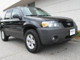 2006 Black Ford Escape XLT V6 4WD #9475602