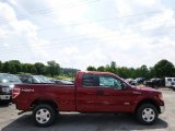2014 Sunset Ford F150 XLT SuperCab 4x4 #94902298
