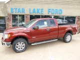 2014 Sunset Ford F150 XLT SuperCab 4x4 #94920922