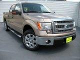2014 Pale Adobe Ford F150 XLT SuperCrew #94951141