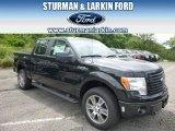 2014 Tuxedo Black Ford F150 STX SuperCrew 4x4 #94951043