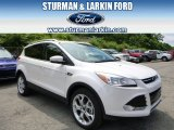 2014 White Platinum Ford Escape Titanium 2.0L EcoBoost 4WD #94951042
