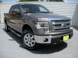 2014 Sterling Grey Ford F150 XLT SuperCrew 4x4 #94951137