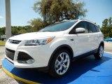 2014 White Platinum Ford Escape Titanium 2.0L EcoBoost #94997945