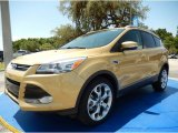 2014 Karat Gold Ford Escape Titanium 2.0L EcoBoost #94997944