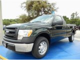 2014 Green Gem Ford F150 XL Regular Cab #95079835
