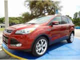 2014 Sunset Ford Escape Titanium 2.0L EcoBoost #95079834