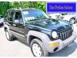 2002 Black Jeep Liberty Sport 4x4 #95079699