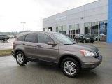 2010 Urban Titanium Metallic Honda CR-V EX-L AWD #95172202
