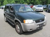 2001 Ford Escape Dark Highland Green Metallic