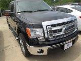 2014 Tuxedo Black Ford F150 XLT SuperCrew #95171919