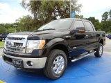 2014 Kodiak Brown Ford F150 XLT SuperCrew 4x4 #95171960