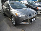 2014 Sterling Gray Ford Escape Titanium 2.0L EcoBoost #95291762