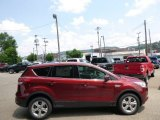 2014 Sunset Ford Escape SE 1.6L EcoBoost 4WD #95291824