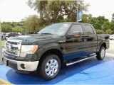 2014 Green Gem Ford F150 XLT SuperCrew #95291793
