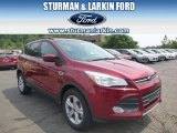 2014 Ruby Red Ford Escape SE 1.6L EcoBoost 4WD #95331069