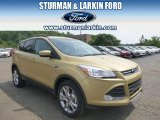 2014 Karat Gold Ford Escape SE 2.0L EcoBoost 4WD #95331064