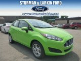 2014 Green Envy Ford Fiesta SE Hatchback #95331056